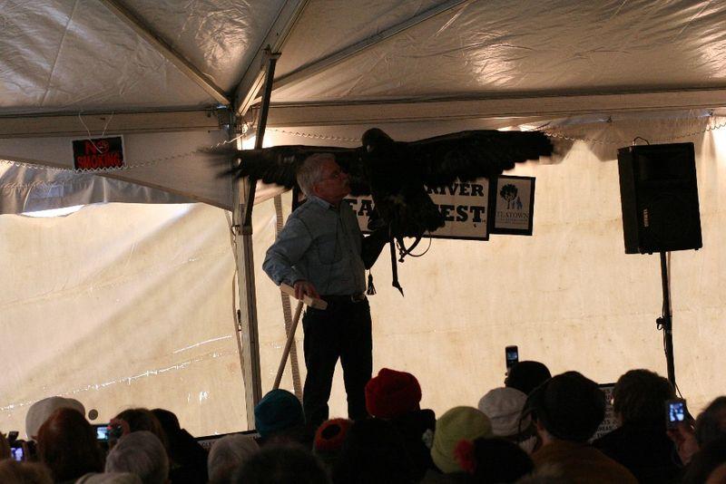 Eaglefest 2010 047