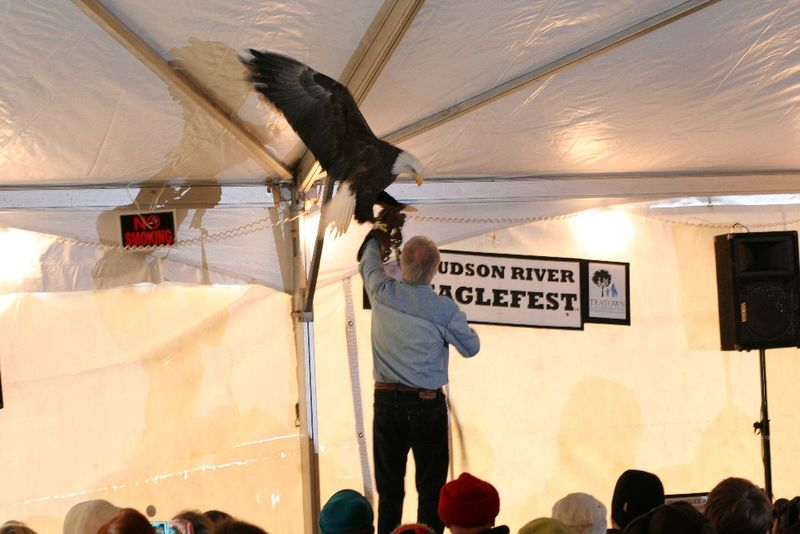 Eaglefest 2010 020