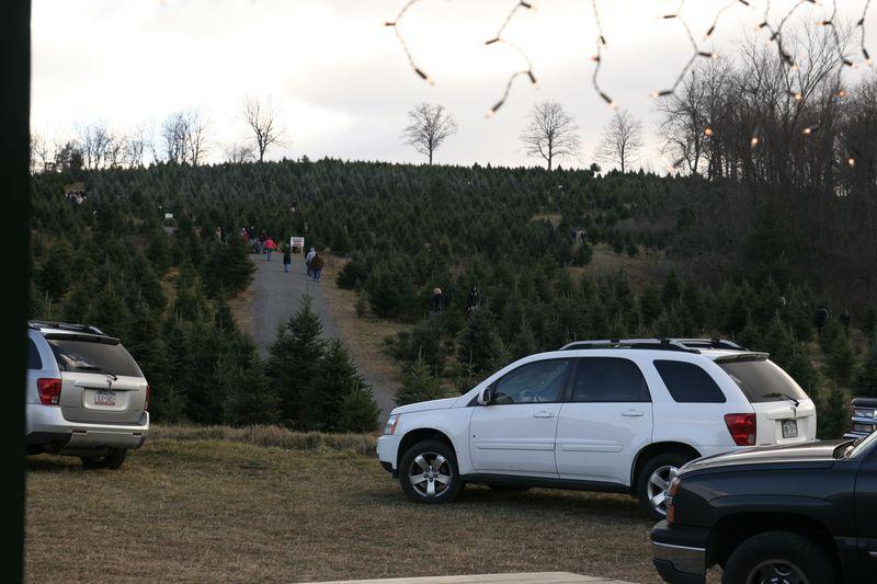 Christmas 2010 017