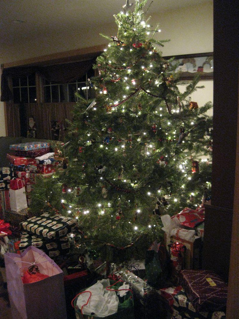 Christmas 2010 140