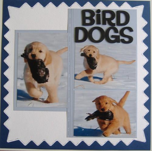 "LO ""Bird dogs"""